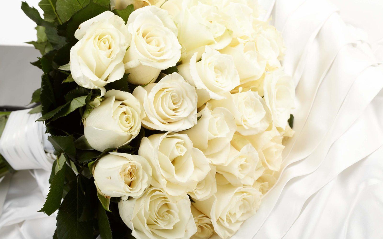 К чему дарят белые розы и что означают эти цветы