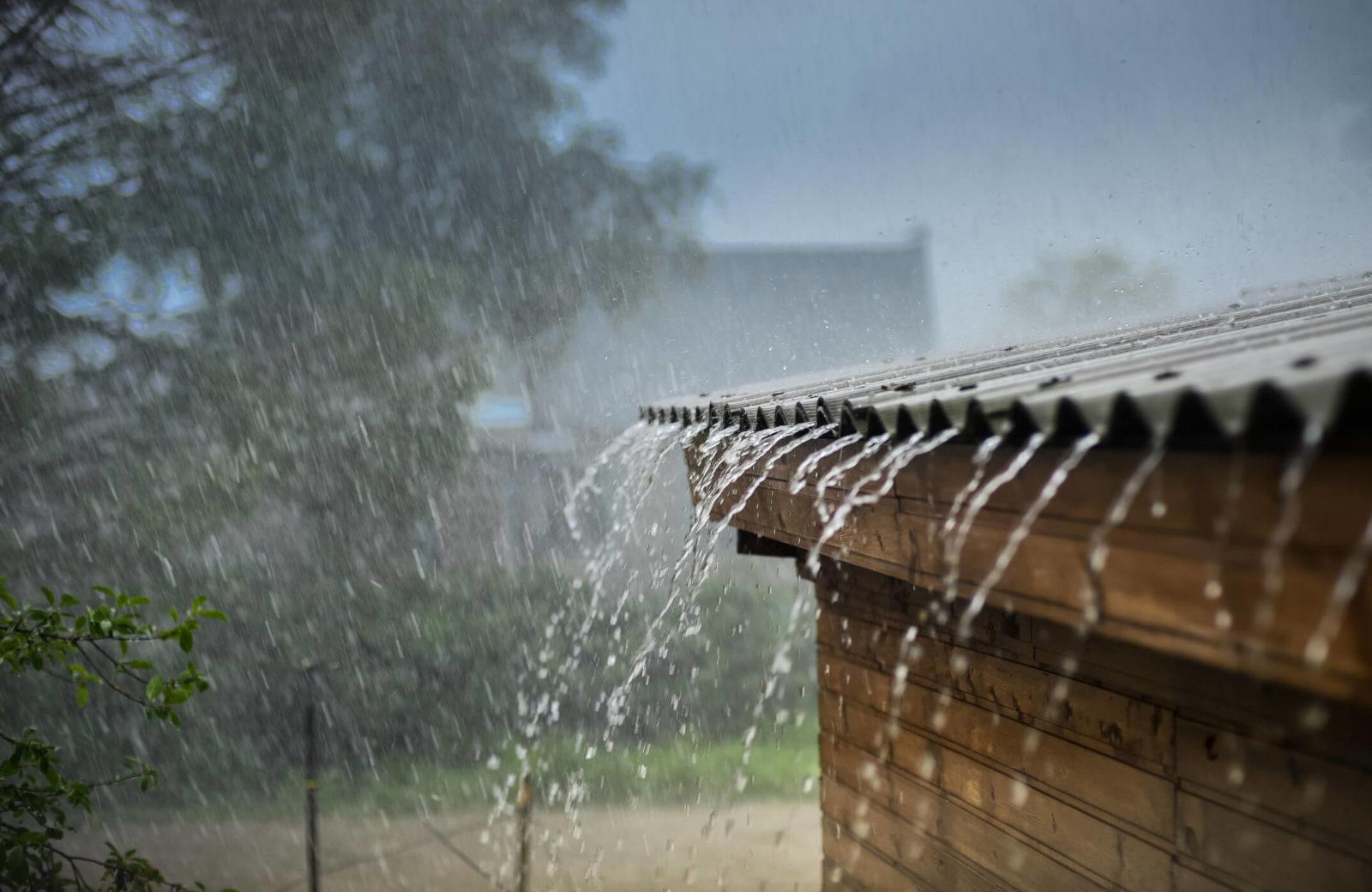 Какие народные приметы говорят о дожде