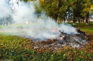 Дым от костра опускается к почве
