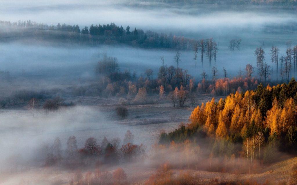 Туман осенью к чему