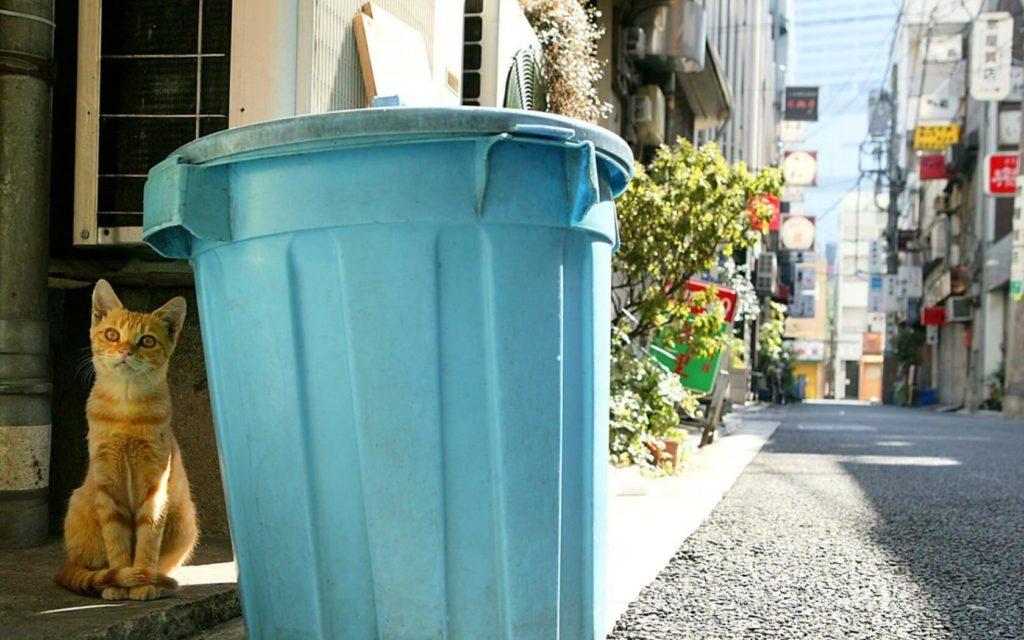 Выкидывать мусор вечером