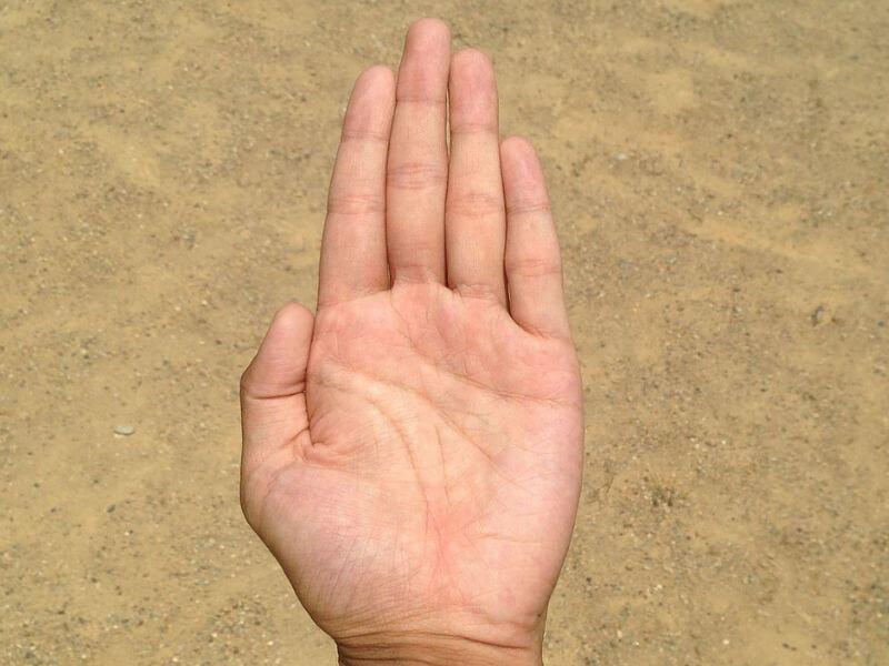 предсказания по руке фото цераты, которые