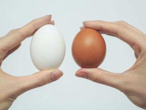 Заговор с яйцами