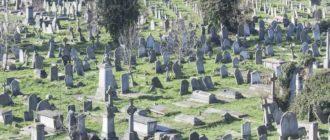Что нельзя делать на кладбище