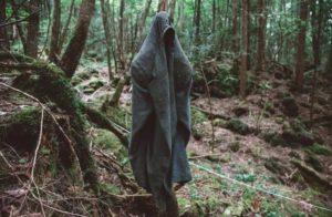 История леса самоубийц