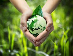 Беречь окружающую среду