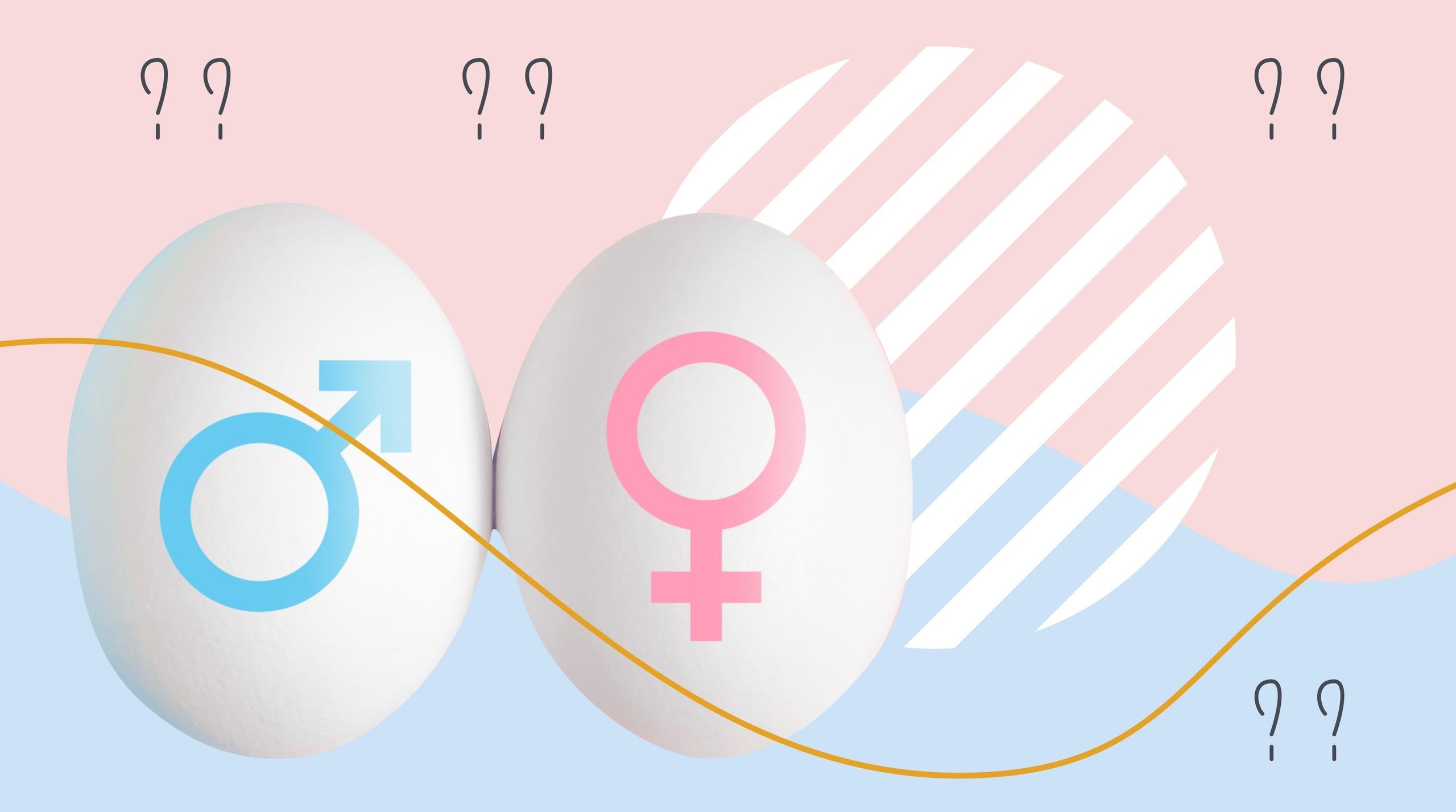 Определить пол будущего ребёнка